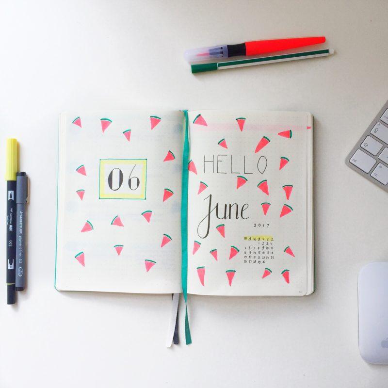 Bullet journal 2017 flip through | BentheBemelman
